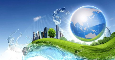 The Many Angles of Sustainability: Waste Management, Trees, and Traffic